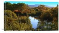 Secret Pond, Canvas Print