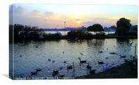 Sunset over Poole, Canvas Print