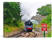 Steam at Harmans Cross, Canvas Print