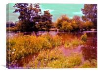 Summer river, Canvas Print