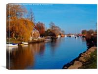 The River Frome, Canvas Print