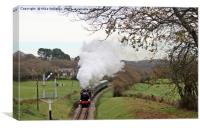 Santa Special approaching Harmans Cross, Canvas Print