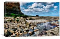 Staithes Durasic Coastline