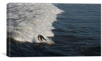 Riding The Surf, Canvas Print