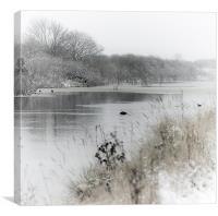 Marsh in snow, Canvas Print
