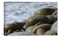 Wet Pebbles, Canvas Print