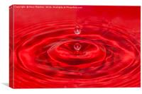 Red Water, Canvas Print