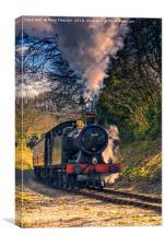 Steam Train 5619