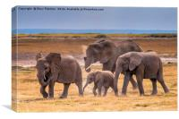 African Elephant Family, Canvas Print