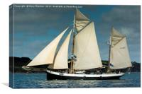 Tallship Tecla, Canvas Print