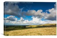 The View to Meldon Reservoir, Canvas Print