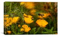 Buttercup Jungle, Canvas Print