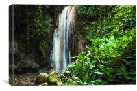 Tropical Waterfall, Canvas Print