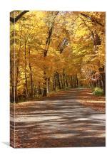 Trip Through Fall, Canvas Print