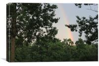 Rainbow, Canvas Print