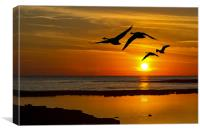 flying sunset, Canvas Print