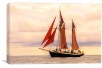 evening sail, Canvas Print