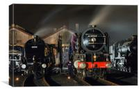 Steam locomotives receive attention on shed at ni