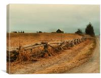 Rambling fenceline, Canvas Print