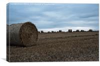 Autum Hay Harvest, Canvas Print