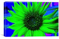 Psychedelic Sunflower, Canvas Print