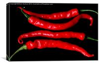 Four Red Chilies, Canvas Print