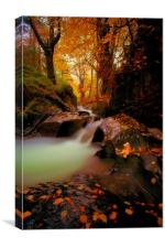 If You Go Down To The Woods Today, Canvas Print