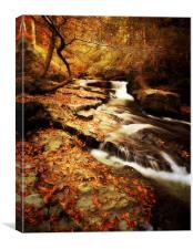 Autumn In The Glen, Canvas Print
