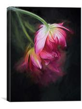 Fusion Flowers, Canvas Print