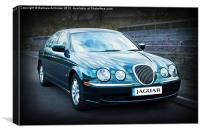 Jaguar~s type, Canvas Print