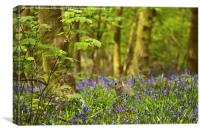 Bluebells & bunnies, Canvas Print