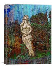 A FISH CALLED WANDER, Canvas Print