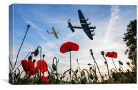 Lancaster & Spitfire over Poppy Field, Canvas Print