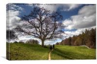 Walking in Wensleydale, Canvas Print