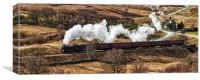 Goathland Steam Train, Canvas Print
