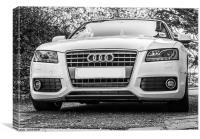 Audi, Canvas Print