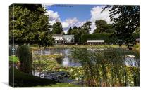 The Gardens At Burnby Hall, Canvas Print