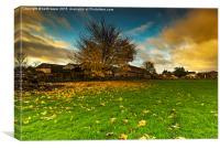 Autumn Dawn, Canvas Print