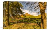 Through the trees to Roseberry Topping, Canvas Print