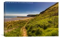 Path down to the beach, Canvas Print