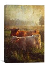 Highlanders. Scottish Countryside, Canvas Print