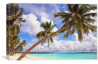Whispering Palms. Maldives, Canvas Print