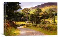 Celtic Spirit. Wicklow  Mountains. Ireland, Canvas Print