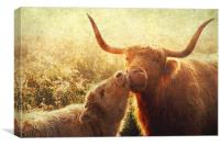 Mammy Love. Highlands Trossachs. Scotland, Canvas Print