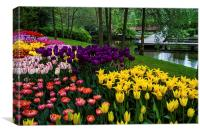 Colorful Corner of the Keukenhof Garden. Tulips Di