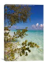 Tropical Island , Canvas Print