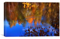 Autumnal Zen , Canvas Print