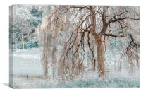 Secret Life of the Willow Tree. Nature in Alien S, Canvas Print