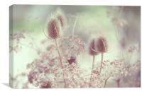 Icy Morning. Wild Grass , Canvas Print