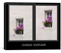 Two Windows with Geranium. Culross. Scotland, Canvas Print